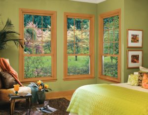 Energy Efficient Window Installation Contractors